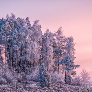 Dreamy frosty morning
