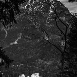 Burgruine Ehrenberg, Österreich