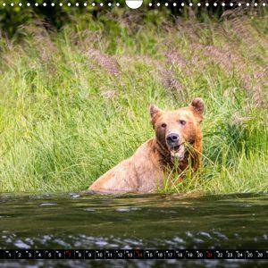 Kalender Juli Kanada - So wild. So schön.